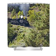 Coming 'round The Bend Shower Curtain