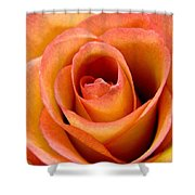 Coming To Life Shower Curtain