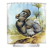 Common Dodo Shower Curtain