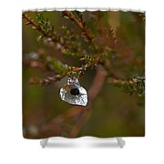 Common Frog Wrong Place Shower Curtain