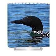 Common Loon Shower Curtain