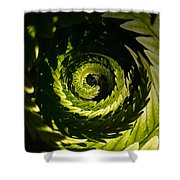 Common Polypody Swirl Shower Curtain