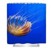 Compass Jellyfish Shower Curtain