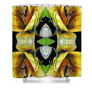 Compassion - Card X From The Tarot Of Flowers Shower Curtain