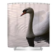 Completely Elegant Shower Curtain