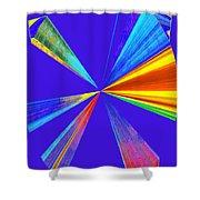 Conceptual 24 Shower Curtain