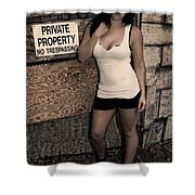 Concrete Velvet 9 Shower Curtain by Donna Blackhall
