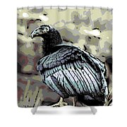 Condor Profile Shower Curtain