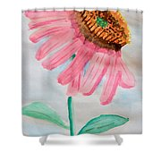 Coneflower - Watercolor Shower Curtain