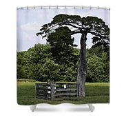 Confederate Grave Of Lafayette Meeks Appomattox Virginia Shower Curtain by Teresa Mucha