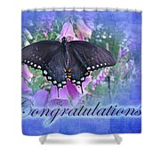 Congratulations Greeting Card - Spicebush Swallowtail Butterfly Shower Curtain
