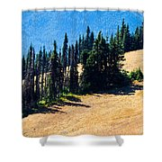 Conifer Clusters Shower Curtain