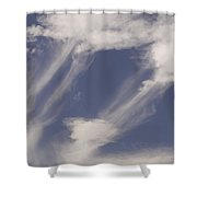 Connectedness Shower Curtain