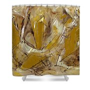 Contemperary Painting 39 Shower Curtain
