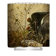 Conversation Dirt Road Shower Curtain by Empty Wall
