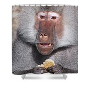 Cookie Shower Curtain