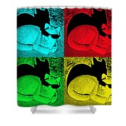Cool Cat Pop Art Shower Curtain