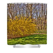 Cool Day Of Spring Shower Curtain