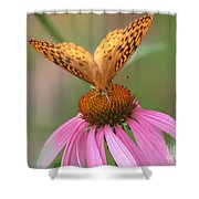 Coordinating Colors Shower Curtain