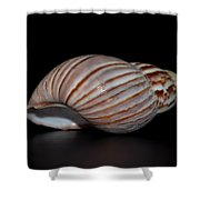 Copper Stripes Shower Curtain