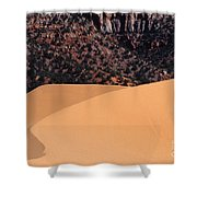 Coral Pink Sand Dunes Shower Curtain