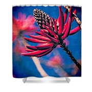Coral Tree Flower Shower Curtain