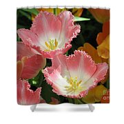 Coral Tulips Shower Curtain