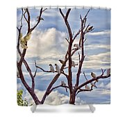 Corella Tree Shower Curtain