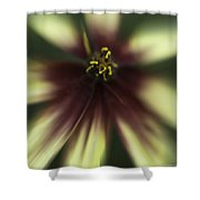 Coreopsis Route 66 Shower Curtain