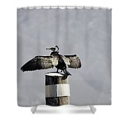 Cormorant Bird Shower Curtain