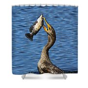 Cormorant Catches Catfish Shower Curtain