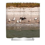 Cormorant Stands Out Shower Curtain