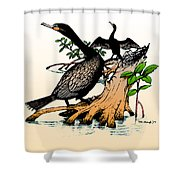 Cormorants On Mangrove Stumps Filtered Shower Curtain