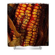 Corn  Shower Curtain