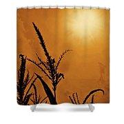 Corn Field Haze  Shower Curtain