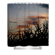 Corn Field With Orange Clouds Shower Curtain