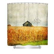 Corn Fields Of Kentucky Shower Curtain by Darren Fisher