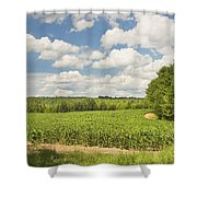 Corn Growing In Maine Farm Field Shower Curtain