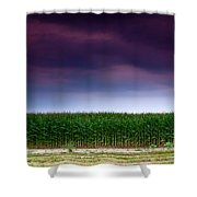 Corn Row Shower Curtain