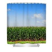 Corn Row Shower Curtain