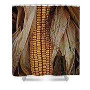 Corn Stalks Shower Curtain