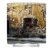 Corner House Shower Curtain