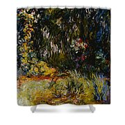 Corner Of A Pond With Waterlilies Shower Curtain