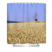 Cornfield With Poppies Shower Curtain