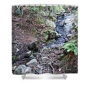 Corte Madera Creek On Mt Tamalpais Shower Curtain
