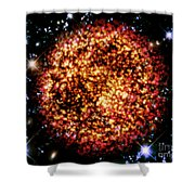 Cos 53 Shower Curtain