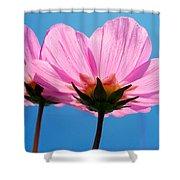 Cosmia Flowers Pair Shower Curtain
