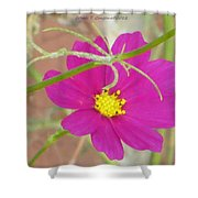 Cosmic Florets Shower Curtain