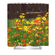 Cosmos Flowers Shower Curtain