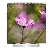 Cosmos Light Shower Curtain
